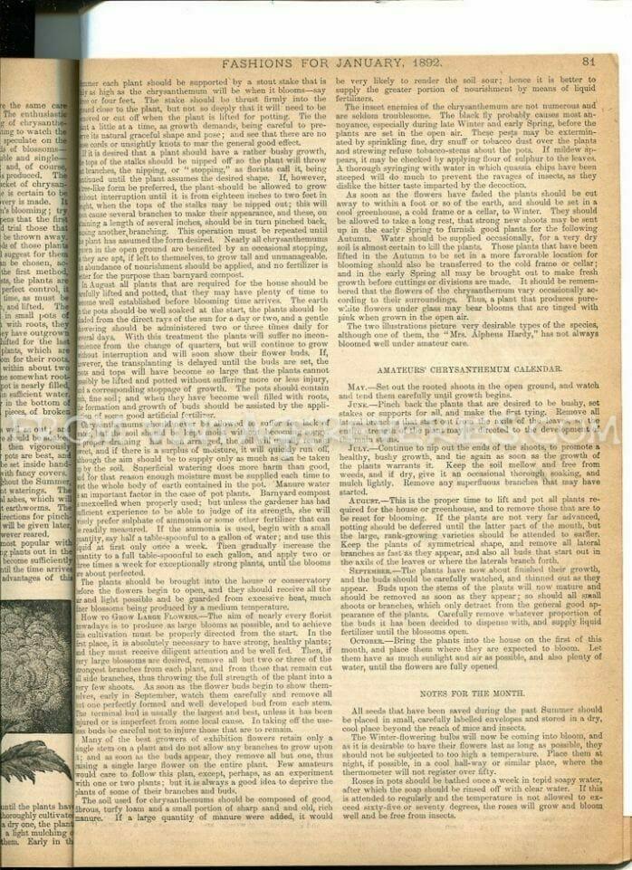 1892 magazine