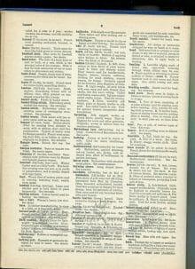 vintage book scan