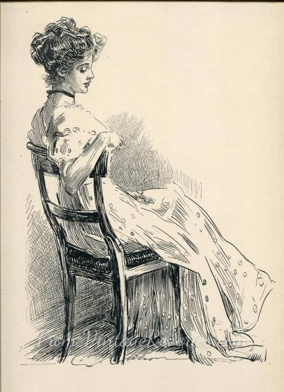 the wallflower gibson girl