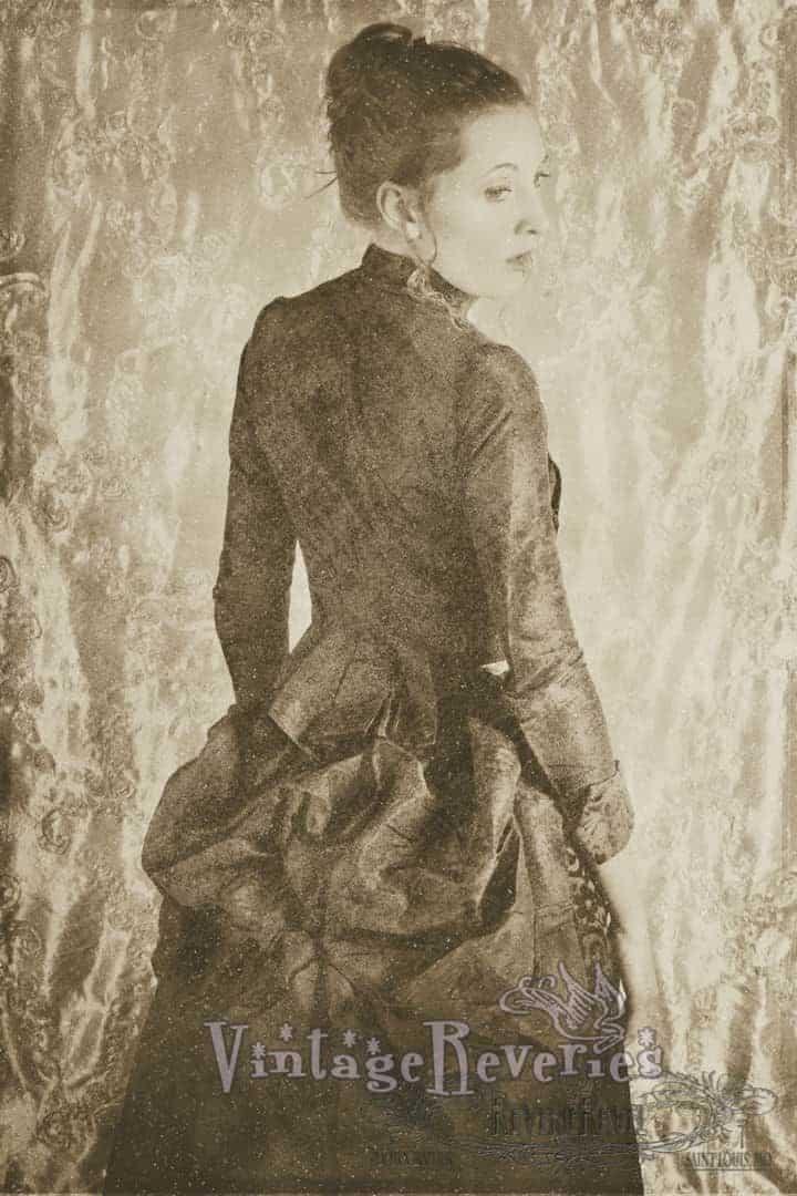 1880s dress 1880s dress bichromate effect